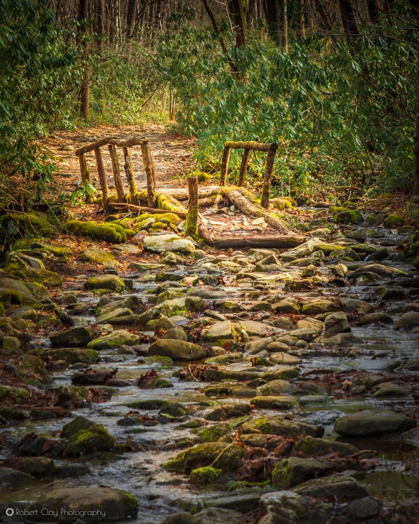 Footbridge along the Lynn Prong Camp Trail at Great Smoky Mountains National Park