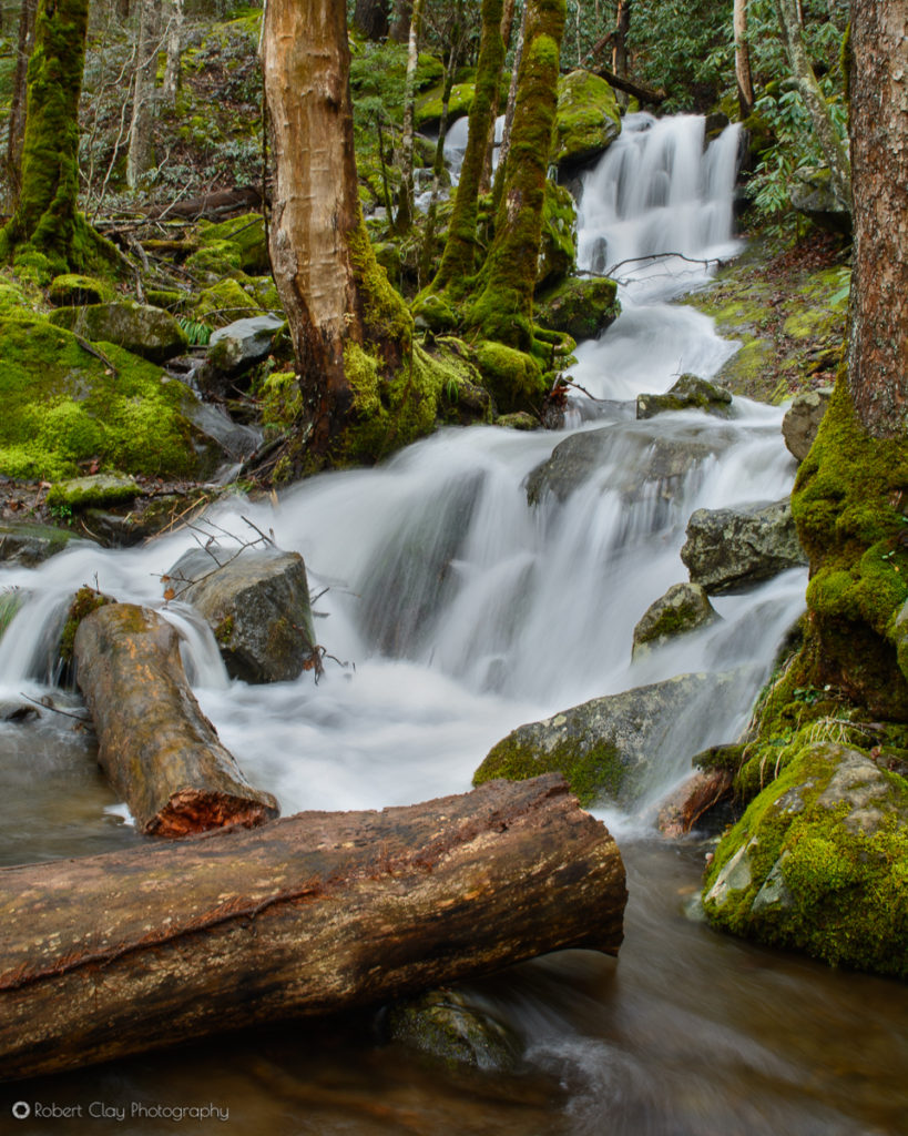 Cascade at the Great Smoky Mountains National Park.