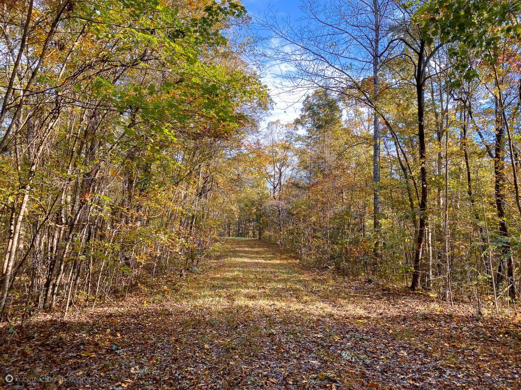 Wide trail to Sid's Falls in Oconee County South Carolina